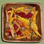 Chilis-anbauen-2